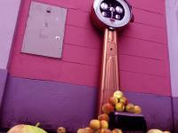 Das Leben hat Gewicht - Projektbild Waage und Äpfel